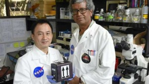 NASA to send fungi to International Space Station to develop new drugs